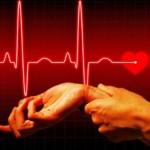 Нормальный пульс при беге и других тренировках
